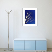 The White Tree - Blue and White Fine Art Photography Print