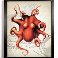 Red Octopus Ephemera Antique Illustration  8 x 10 Giclee Art Print Upcycled Collage Recycled Book Art Sea Life Buy 2 Get 1 FREE