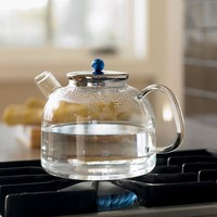 Heat Proof Glass Tea Kettle | The Gadget Flow