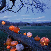 Celestial Pumpkins - Martha Stewart Crafts