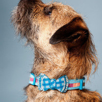 Diamond in the Ruff Dog Collar | Mod Retro Vintage Pet Accessories | ModCloth.com