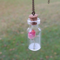 Dried rose glass vial pendant, pink flower bottle necklace with cork, real flower jewelry, terrarium necklace, eco friendly, Vintage style