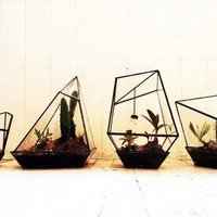 Geometric Terrariums from Assembly New York  ACCESSORIES -- Better Living Through Design