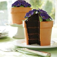 Yummy Flower Pot Cake.