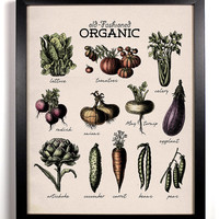 Organic Vegetables Antique Illustration  8 x 10 Giclee Art Print Upcycled Collage Recycled Book Art Kitchen Wall Art Buy 2 Get 1 FREE