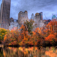Central Park in Autumn num 5,  8x10 HDR Fine Art Photo Print