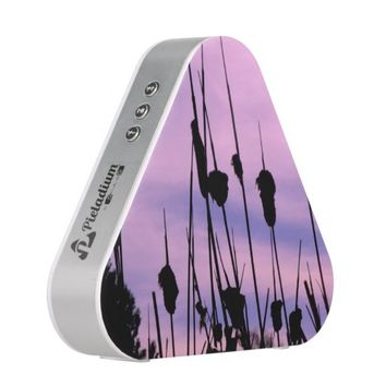 Purple Sunset Speaker