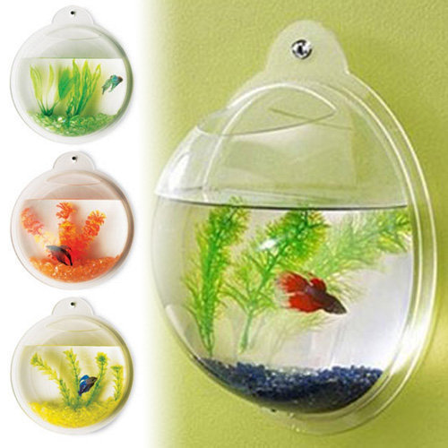 wall mounted fish tank betta bubble from ebay
