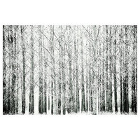 Winter Art - Black and White - Wonderland - Fine art photography print - Winterforest - Woodland - 6,7 x 10
