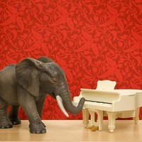 elephant art, bright red, music room, piano, animal print - The Elephant In The Room 8 x 10