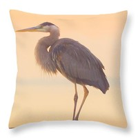 "Evening Heron - Colorful Pastel Throw Pillow 26"" x 26"""