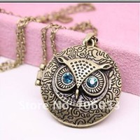 Amazon.com: Vintage Round Owl Locket Necklace Retro: Jewelry