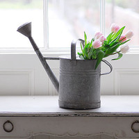 Decorative Country Living ~ French watering cans
