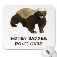 Honey Badger Don't Care Red Mousepad from Zazzle.com