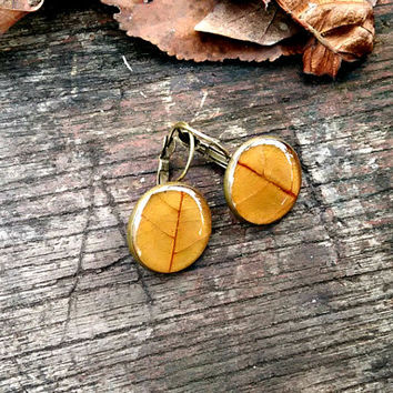 Real leaf earrings - Brown chestnut leaf - Pressed leaf earrings - Nature inspired jewelry - French earwire hooks - Round bronze - Autumn