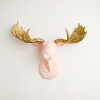 Moose Head - The Eva - Cameo Pink w/ Gold Glitter Antlers Resin Moose Head- Moose Resin Faux Taxidermy- Chic & Trendy
