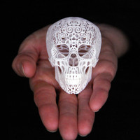Skull Sculpture Crania Anatomica Filigre (mini)