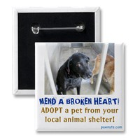 Broken-hearted pets buttons from Zazzle.com
