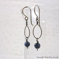 Sodalite Niobium Oval Loop Dangle Earrings