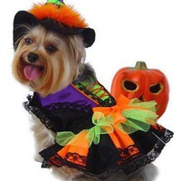 Dog Halloween Costume - Witch