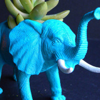 Aqua Elephant Succulent Planter Pot with Succulent by crazycouture