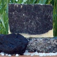 The Bees Knees » Detoxifying Charcoal with Sea Salt