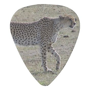 Cheetah Guitar Pick