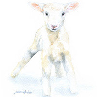 Lamb Watercolor Painting Note Cards Set of 6 - Sheep Baby White Lamb Animal Cards