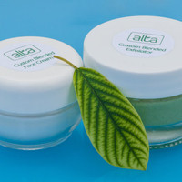 Face Cream and Exfoliating Gel Botanical Beauty Duo - Natural  Skin Care - Custom Blended - FREE S/H