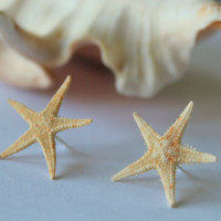Mini Starfish Earrings