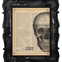 Skull Art Print Vintage Dictionary Print Antique Book Page Anatomy Art Print