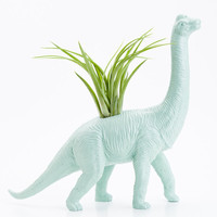 Dinosaur Planter with Air Plant Room Decor, College Dorm Ornament, Plants and Edibles