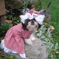 Granny Dress/Big Bad Wolf Dog Halloween Costume Size Medium
