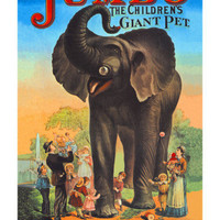 Jumbo, The Children&#x27;s Giant Pet Prints at AllPosters.com
