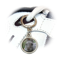Bunny Rabbit Gray Easter Shoe Charm - No. 1