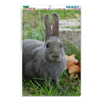 Bunny Rabbit Gray - Easter MAG-NEATO'S TM Puzzle Magnet
