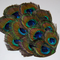 Peacock Feather Pad -  FP119 - (1 pc)