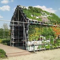 Edible Garden Shed