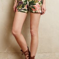 Ranunculus Bloom Shorts by Elevenses Green Motif