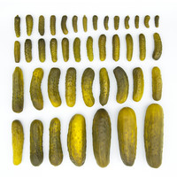 emily blincoe | prints | in a pickle