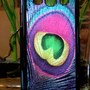 Samsung Galaxy S3 SIII Neon Colorful Peacock Feather  Case Samsung Galaxy S3