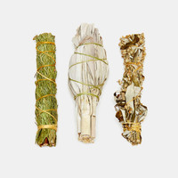 Juniper Ridge Sage Mugwort Cedar Smudge Sticks - Urban Outfitters