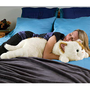 Cat Hug Body Pillow, Cat Body Pillow, Body Pillow - Wind & Weather