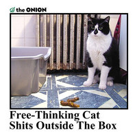 Onion Store &gt; Free Thinking Cat Shits Outside The Box