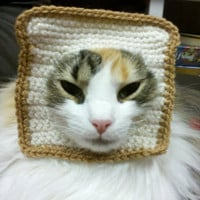 In-Bread Crochet Cat Costume - Crochet Kitteh Bread
