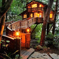 For the Home / Treehouse ... oh I could live like this