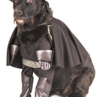 Zorro Halloween Costume