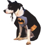Batman Dog Halloween Costume