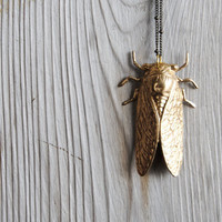 Cicada Necklace  Free Shipping in the US by sparklefarm on Etsy