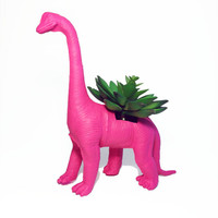 Up-cycled Large Sized Dragonfruit Pink Apatosaurus Dinosaur Planter